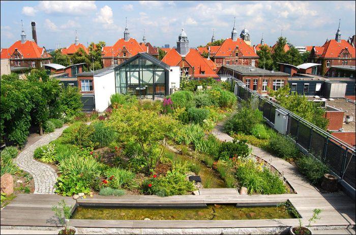 Крыши домов в европейских странах (47 фото)