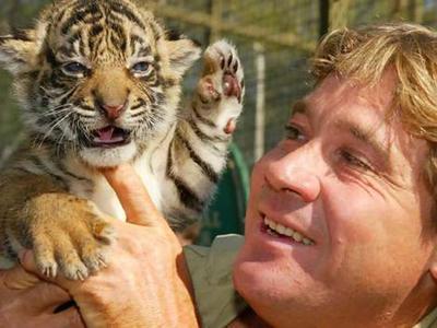4 сентября 2006 года в 11 утра 44-летний Стив Ирвин спустился с аквалангом под воду, чтобы снять больших хвостоколов у Большого Барьерного рифа. Он занимался сбором материала для своего очередного фильма «Смертельно опасные существа океана».