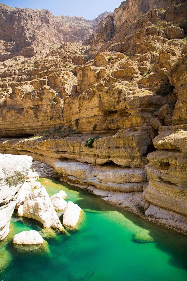 Райский оазис в Оманской пустыне