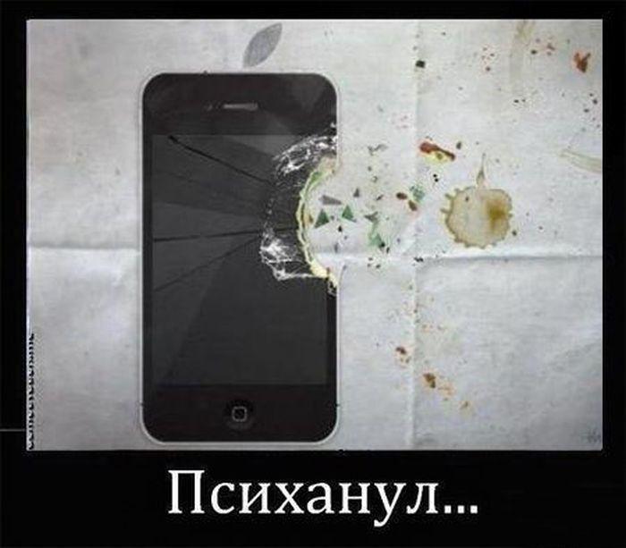 В порыве гнева (40 фото)