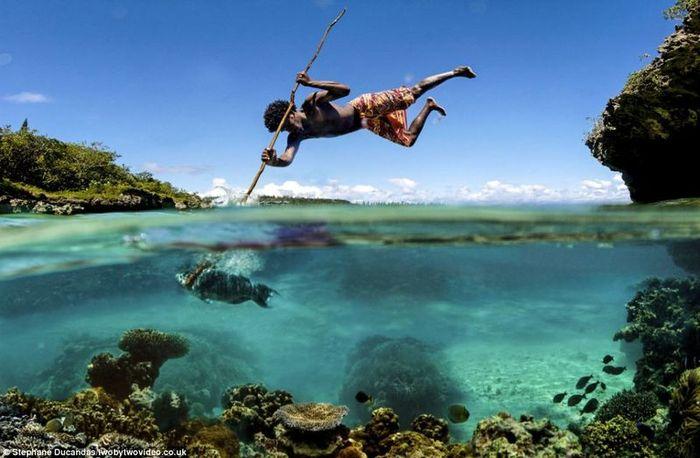 Рыбная охота (8 фото)