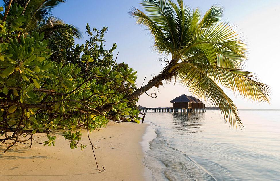 Великолепный Тропический курорт