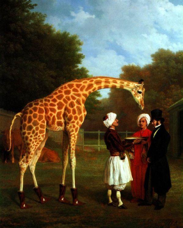 Жирафная фотожаба (46 рисунков)