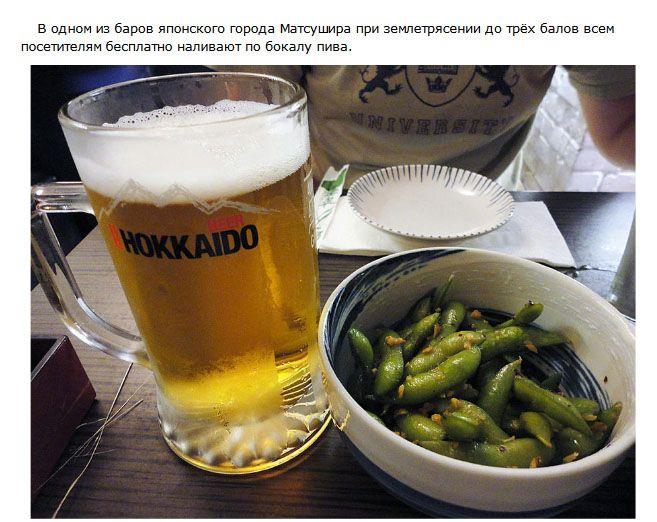 Самые интересные факты о пиве (10 фото)