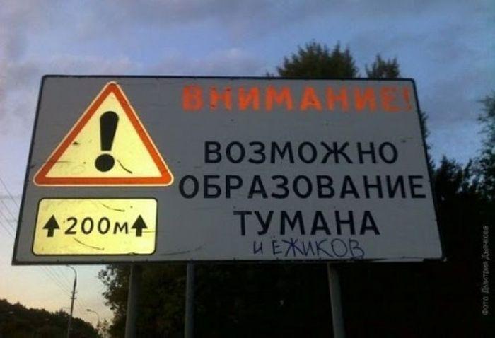 Смешные надписи (47 фото)