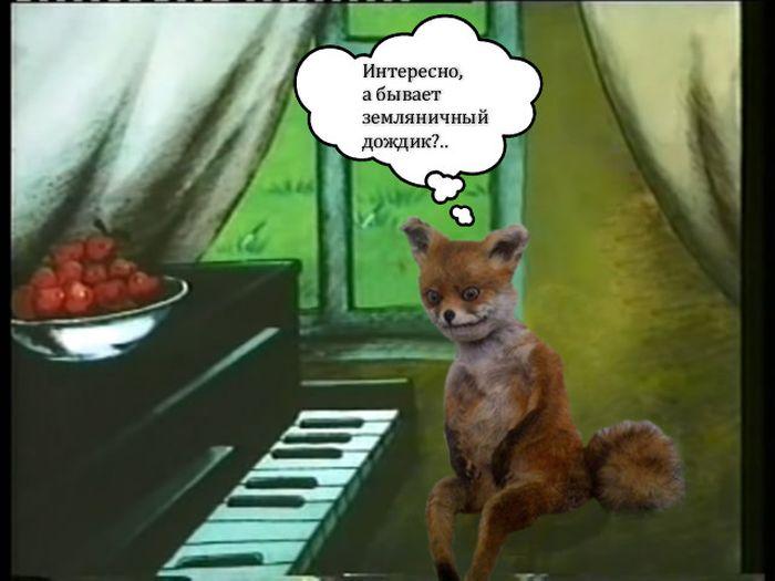 Чучело лисы ставшее интернет-мемом (41 фото)