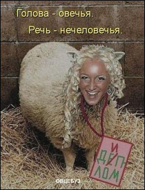 """Приколы про участников """"Дом 2"""" (64 фото)"""